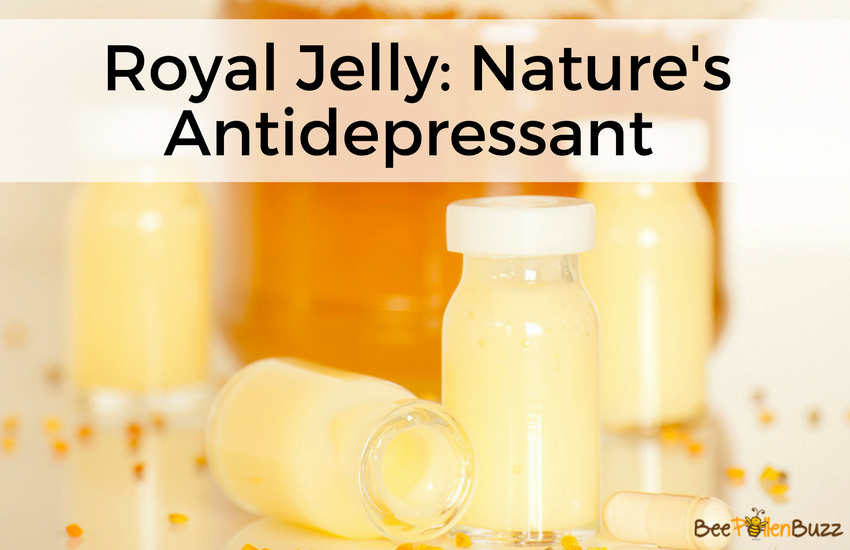 Royal Jelly Treats Depression and Anxiety