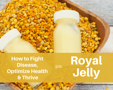 royal jelly capsules for fertility
