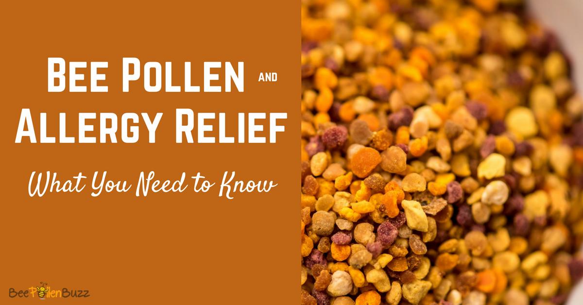 Bee Pollen for Allergies
